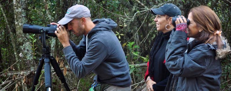 Observación aves birding Valle Nuevo