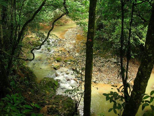 Río reserva privada El Zorzal